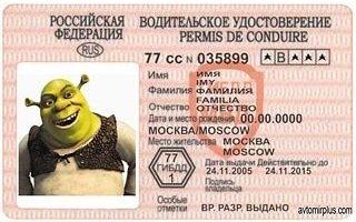 Способы получения водительских прав
