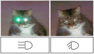Замена ламп освещения и фар ВАЗ