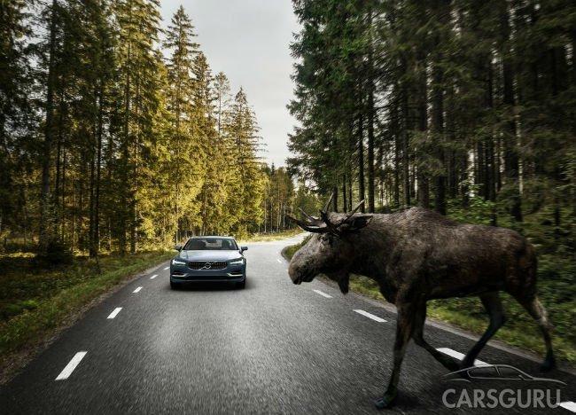 Продажи Volvo в России снизились на 14,4%
