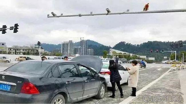 Китаянка попала в аварию, перепутав зад обезьянки со светофором